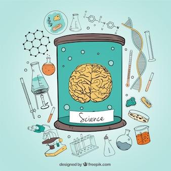 Cervello umano e le icone di scienza illustrazione