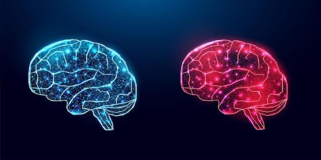 人間の脳。ワイヤーフレーム低ポリスタイル。医療、脳腫瘍、ニューラルネットワークの概念。紺色の背景に抽象的なモダンな3dベクトルイラスト。