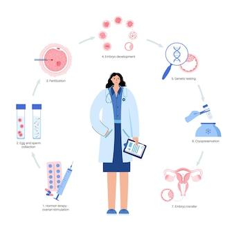 Анатомия яйцеклетки человека. оплодотворение, гинекология и исследования эко.