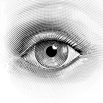 Human eye in engraved style