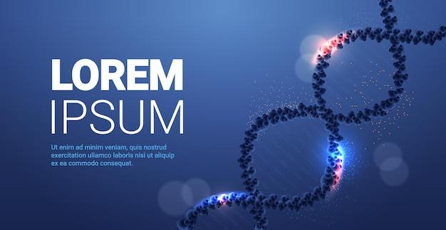 人間の遺伝子dnaらせん分子構造クリニック医療研究とテスト