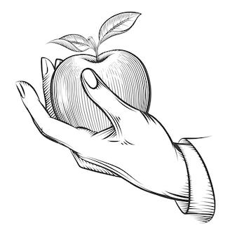 Mano umana con mela disegnata nello stile dell'incisione. mela frutta, natura, cibo mela fresca, incisione mela con foglia, schizzo vintage organico, mela.