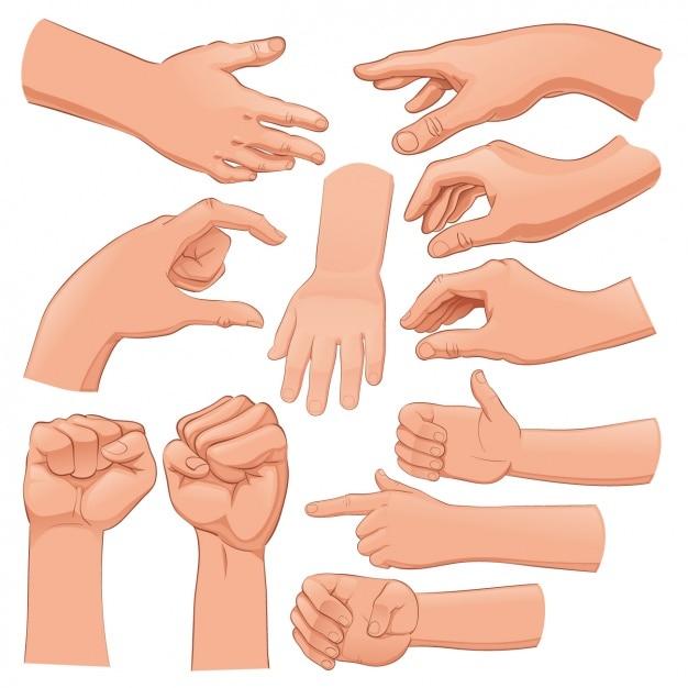 hands vectors photos and psd files free download rh freepik com hand vector freepik hamsa hand vector free download
