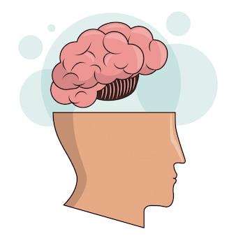 Human head brain memory intelligence image