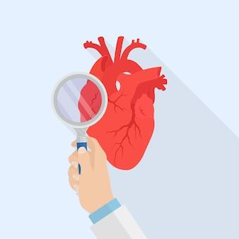 虫眼鏡イラスト付きの人間の心臓診断器官