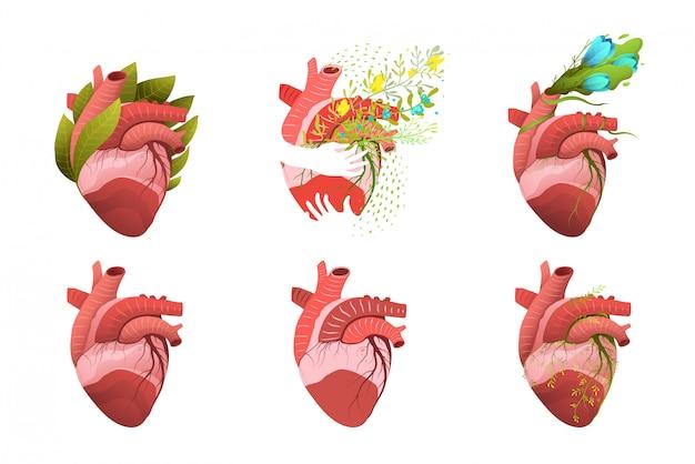 人間の心の内臓デザインセット。花と葉で飾られたフラットと3 dハートの医療と健康のイラスト集。設計。