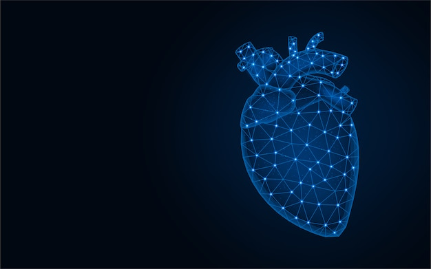 Human heart low poly model, human organs abstract graphics, anatomy polygonal wireframe vector illustration on dark blue background