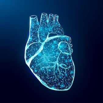 Человеческое сердце. каркасный стиль низкой поли.