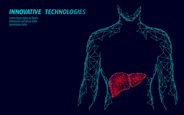 Human liver hepatitis treatment medicine business concept.