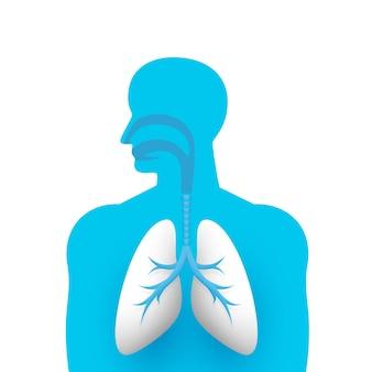 人間の肺の医療アートクリエイティブ。ベクトルイラスト