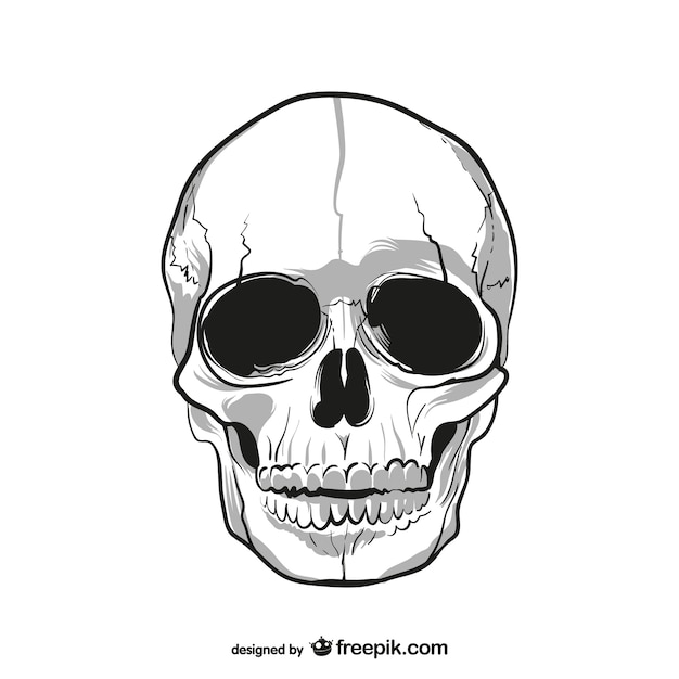 skull vectors photos and psd files free download rh freepik com deer skull vector art skull vector free