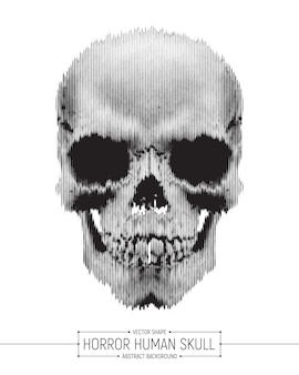 Human skull horror art illustration