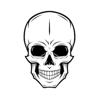 Skull Images 33 758 Vectors Photos