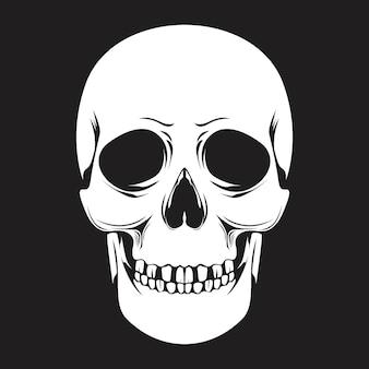Человеческий череп-вектор