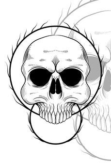 Human skull with root artwork illustration