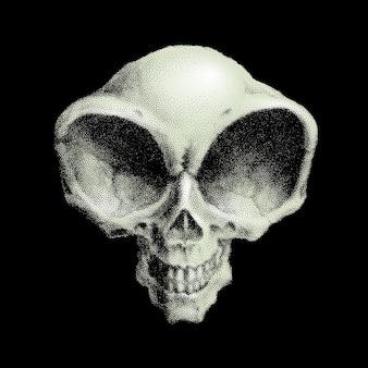 ヒューマノイドエイリアンの頭蓋骨。