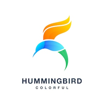 Humming bird colorful vector