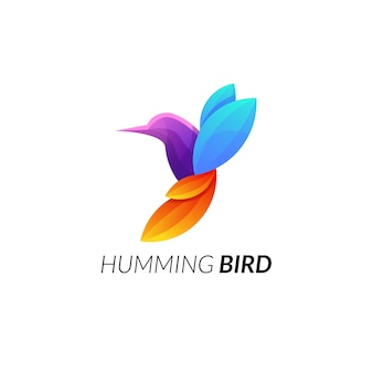 Humming bird perfect combination colorful