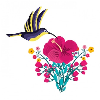 Hummingbird bird flower tropical