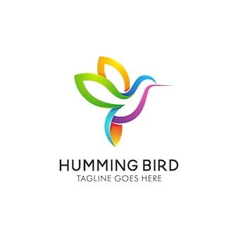Hummingbird logo design template.