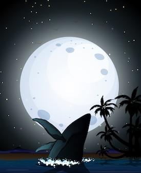 자연 장면 실루엣에 향유 고래
