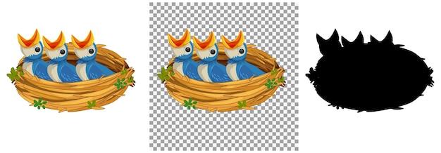 巣で食べ物を待っている空腹のひよこ