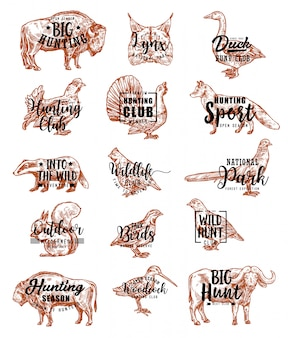 Hunt open season animals and birds lettering icons