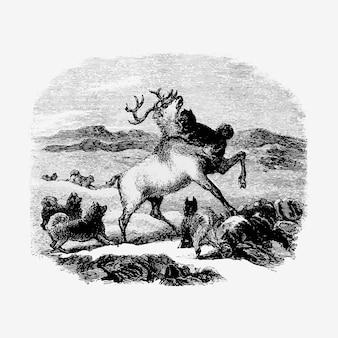 Hunting reindeer