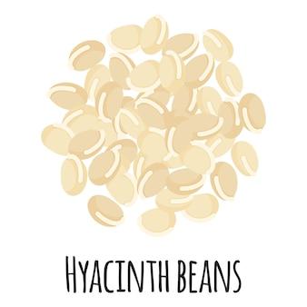 템플릿 농부 시장 디자인, 라벨 및 포장을 위한 히아신스 콩. 천연 에너지 단백질 유기농 슈퍼 푸드.