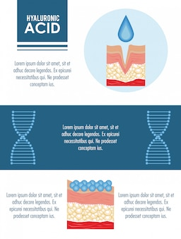 Hyaluronic acid filler injection infographic
