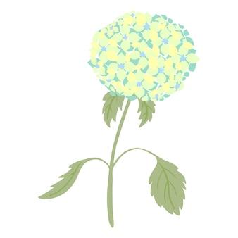 Гортензия со стеблем и листьями, изолированные на белом фоне. винтажный эскиз синий цветок. красивое летнее растение в стиле каракули. дизайн для любых целей. векторная иллюстрация.