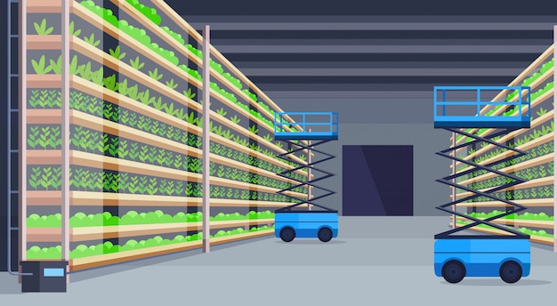 Hydraulic scissors lift platforms in modern organic hydroponic vertical farm interior agriculture farming system concept green plants growing industry horizontal