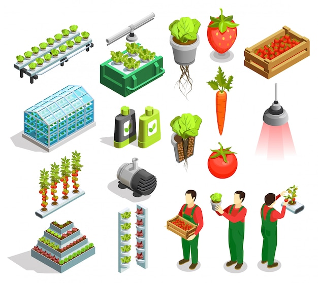 Hydroponic and aeroponic isometric icons