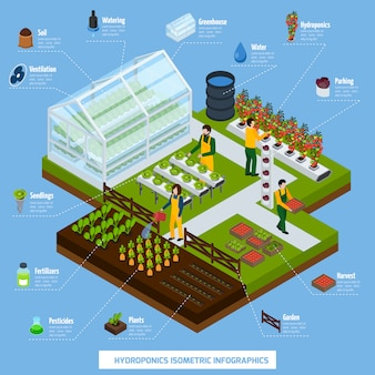 Hydroponics and aeroponics infographic set