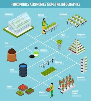 水耕栽培インフォグラフィックセット