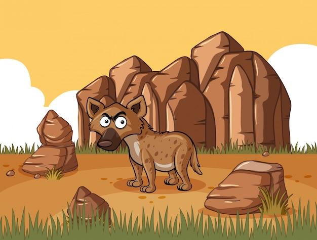 Гиена, стоящая в пустынном поле