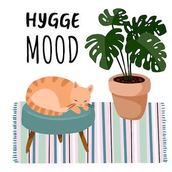 Hygge mood postcard. cat on a stool in scandic stylish room interior. home lagom decorations. cozy season. modern comfy apartment furnished in hygge style