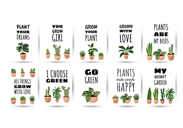 Hygge set of postcards. collection of potted succulent plants flyers. cozy lagom scandinavian style posters
