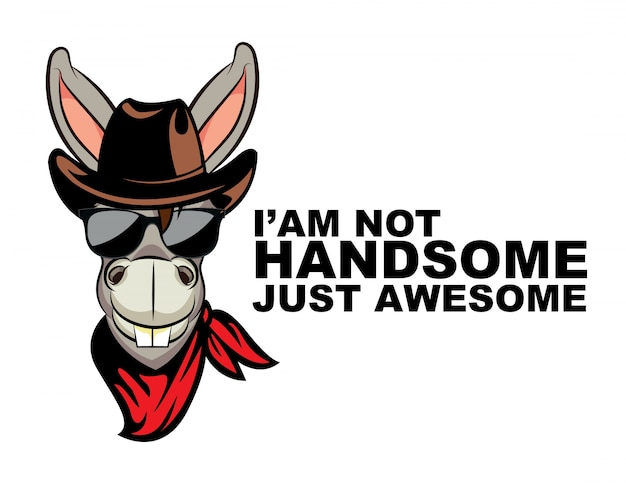 I'am not handsomw just awesome donkey