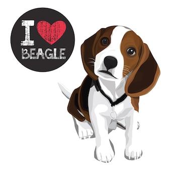 I love beagle