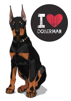 I love doberman