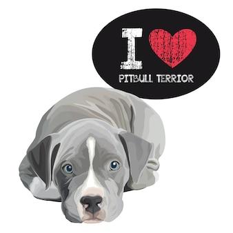 I love pitbull terrior
