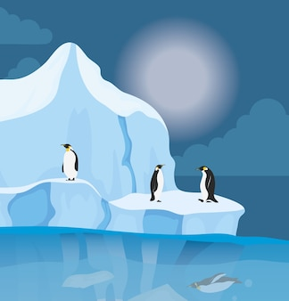 Iceberg block arctic night scene with penguins