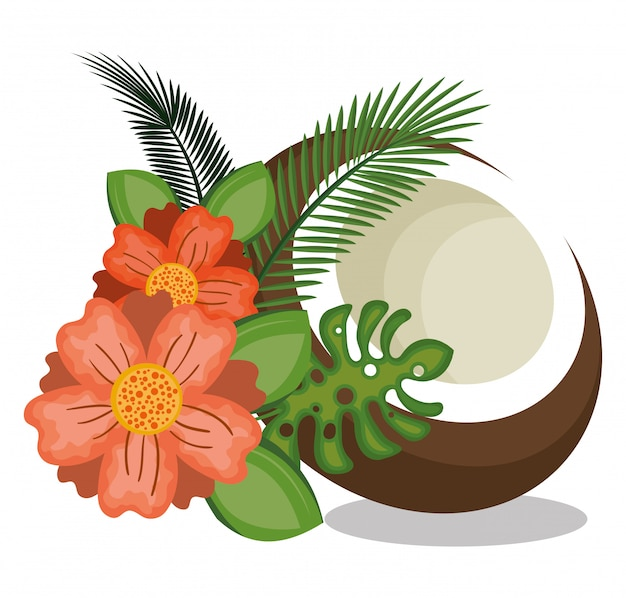 Icon coconut design