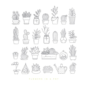 Icon flat set plants in pots drawing on white background.