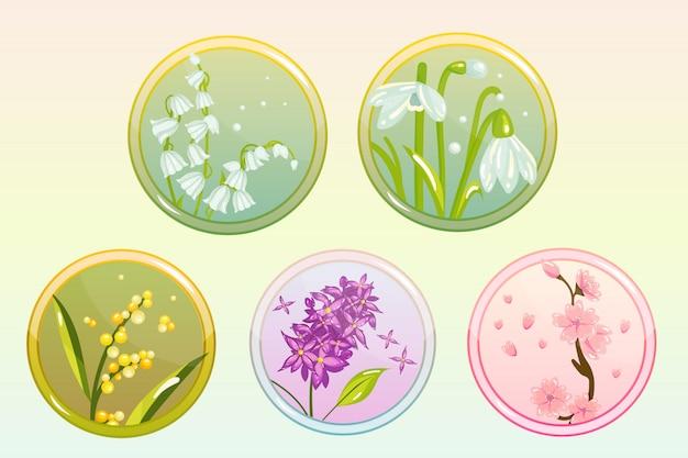 Набор иконок с цветами сирени, лилии, подснежника, сакуры и мимозы