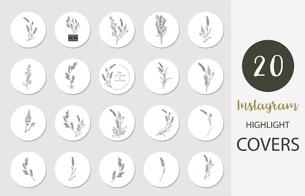 Icon of instagram highlight cover with lavender,flower,leaf in boho style for social media