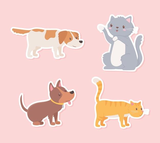 Icon pets animals