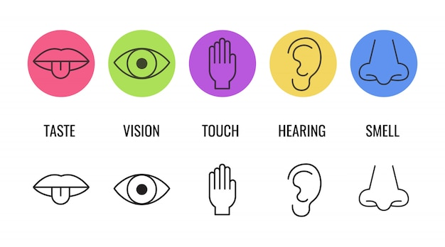 Icon set of five human senses