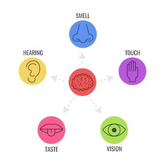 Набор иконок из пяти человеческих чувств